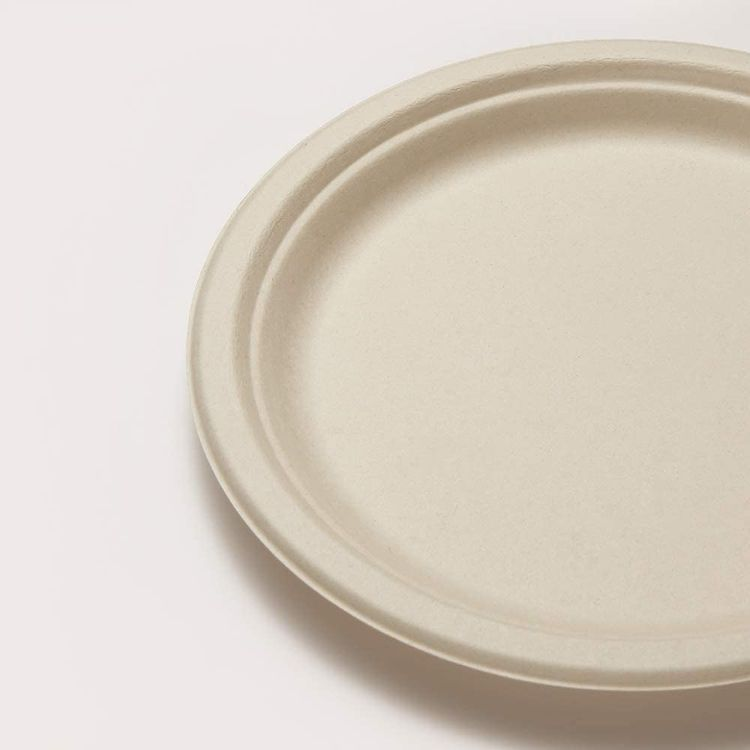 Heavy-Duty Biodegradable Paper Plates 9 inches Bulk, 200 Count, Eco-friendly Compostable Plates Disposable, Made from Sugarcane Bagasse