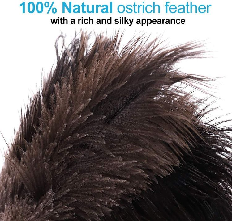 Midoneat Natural Black Ostrich Feather Duster,2 Packs,Car Duster Interior/Exterior Cleaner,Duster for Blinds Kitchen Keyboard Office, Smart and Soft and Fluffy Duster (Black)