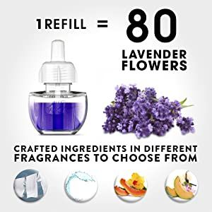 essential oils lavender,essential oil,aromatherapy,oils for diffuser,air freshener, plug in, airwick